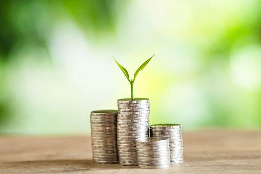 Sulle critiche alla Moneta Fiscale: una risposta a Roberto Perotti